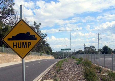 Mystery joker installing funny road signs